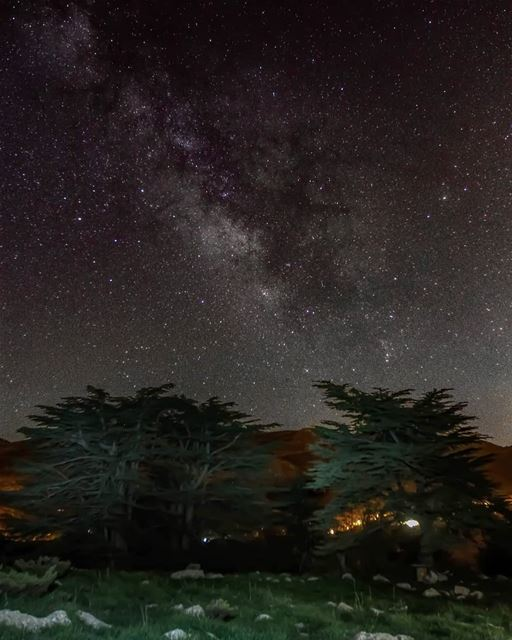 Yesterday night was the first day of the new moon, so it was a perfect... (Cedar Reserve Tannourine)