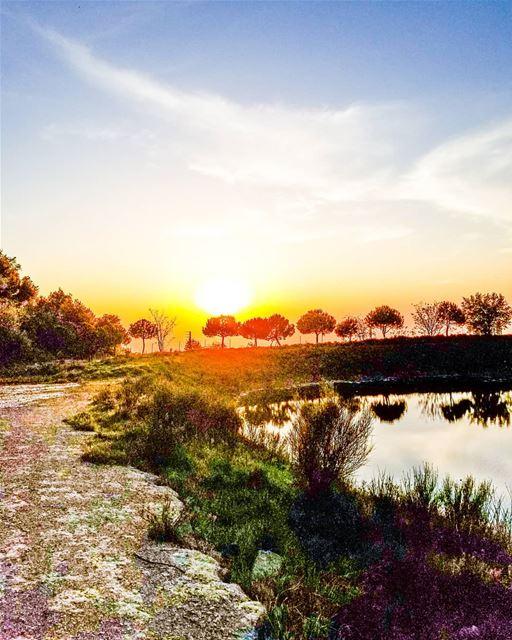 A sunset mistaken for dawn 💛 (Annâya, Mont-Liban, Lebanon)