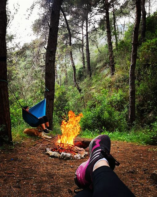 nature firecamp  hammock  hammockcamp  girlsout  hiking  dayout ...