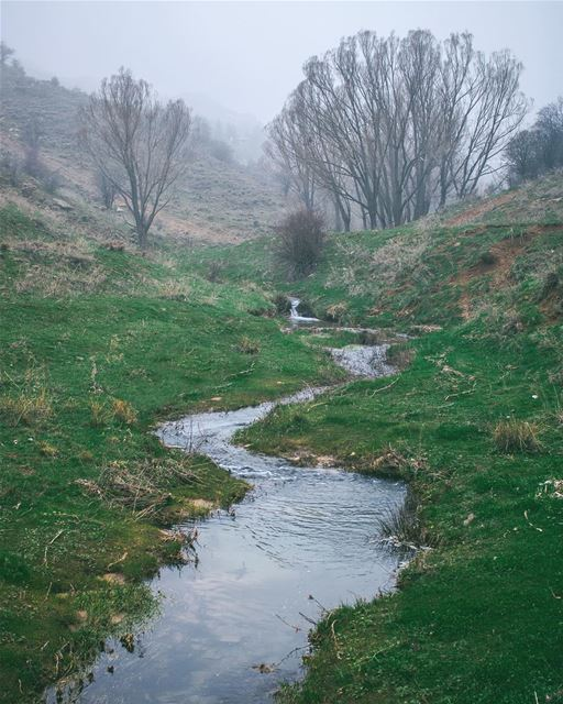 'no river can return to its source; yet all rivers must have a... (El Laklouk, Mont-Liban, Lebanon)