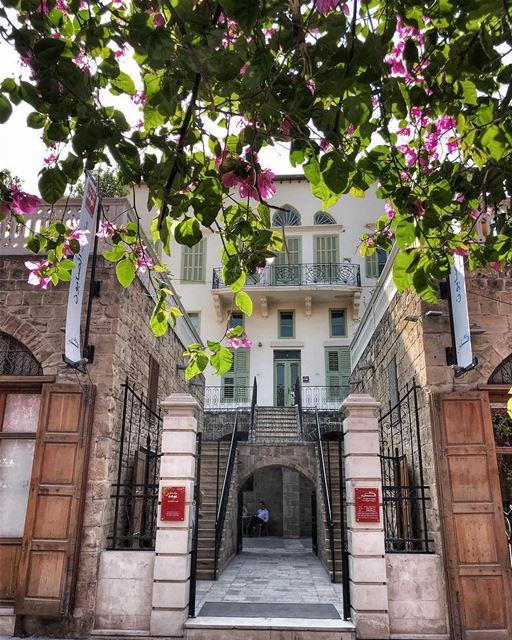 Saida 🌸.. lebanon spring lebanese house museum ... (The Soap Museum - Hammam)