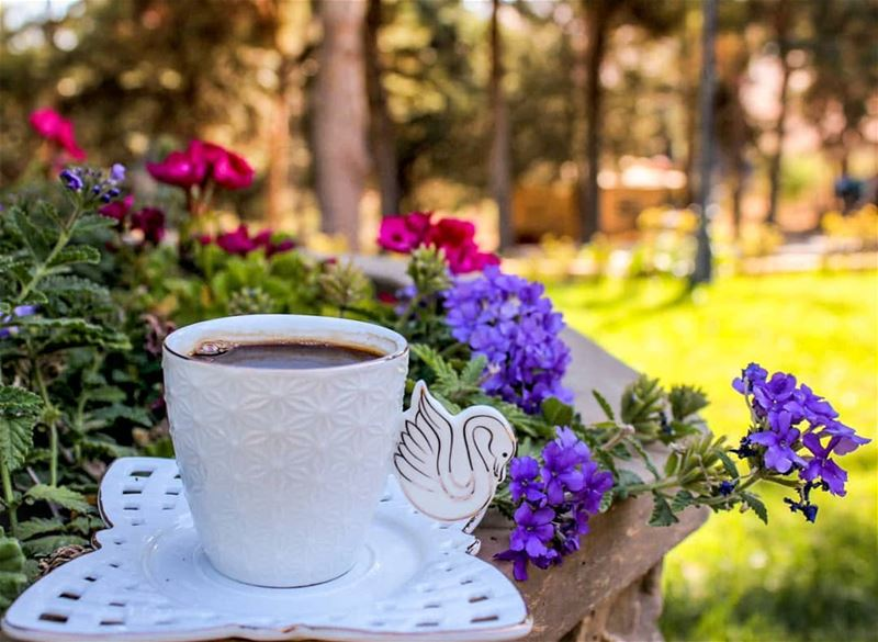 إذا كان الله راضياً فسلاماً على الدنيا وما فيها... صباحكم_ورد صباح_الخير...