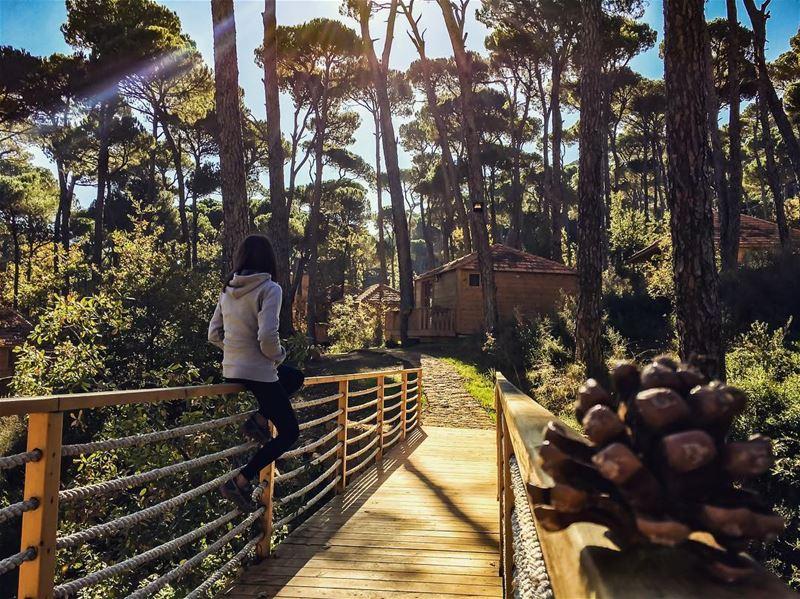 What I desperately need right now ☝🏻💆🏻♀️.......... lebanon ... (La Maison de la Forêt)