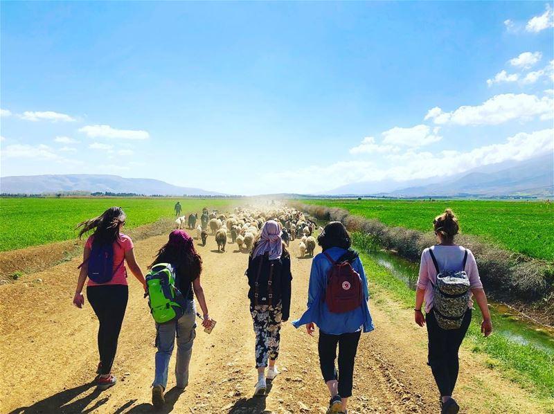 U dont know unless you go 🏞💚💙 hiking hikingadventures hiking👣 ... (West Bekaa)