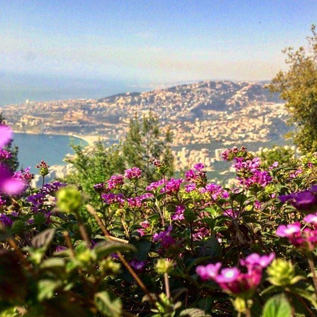 Un jour, nous nous réveillerons et nous nous appercevrons que nous n'avons... (Lebanon)