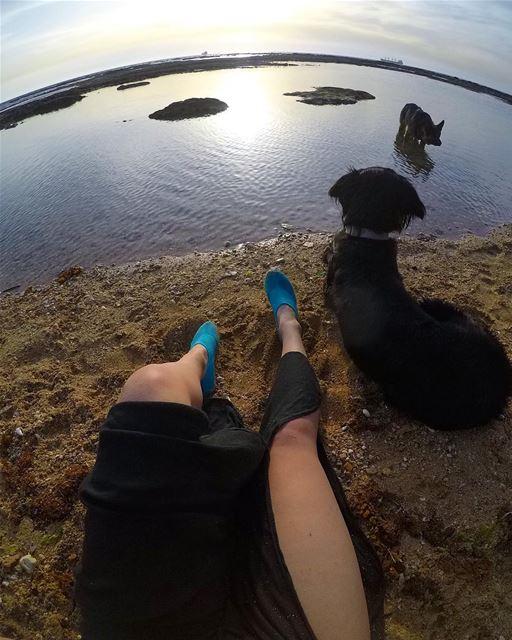 شفت كلب أسود عل بحر (Al Batrun, Liban-Nord, Lebanon)
