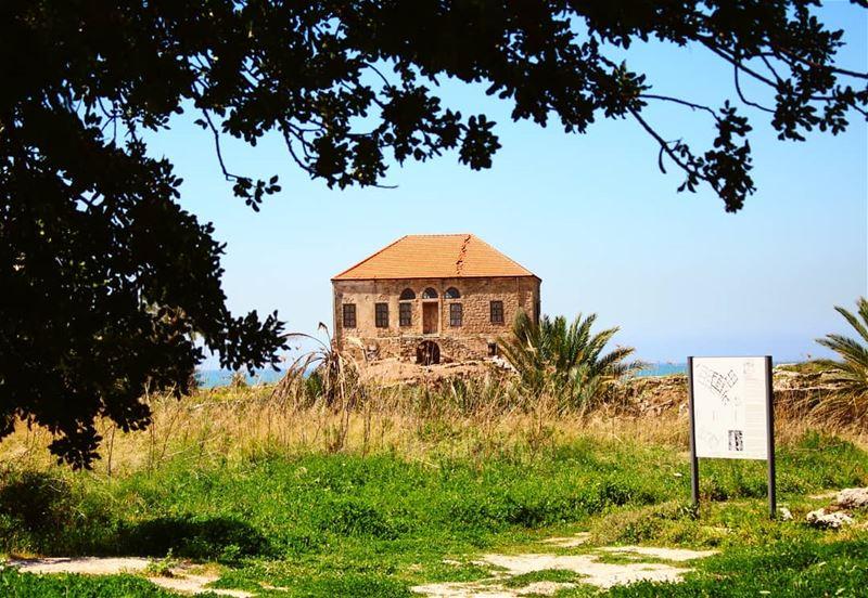 Still standing! lebanesehouses lebaneseoldhouses 3000years heritage ... (Jbeil جبيل)