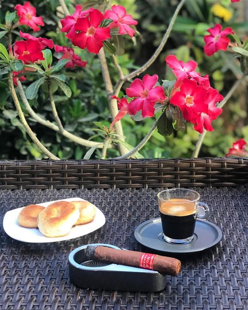 Friday therapy. spring flowers espresso kaak lebanon zahle cigar cigars... (Emirate of Ajman)