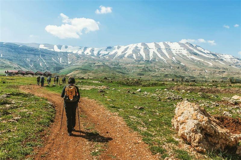 Towards the mountain ____________________________________________________... (El Arz, Liban-Nord, Lebanon)