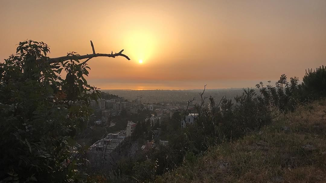 This.Is.For.Me🔥🌿🇱🇧  morenature  sunset  strength  baabda  wild  free... (Baabda District)