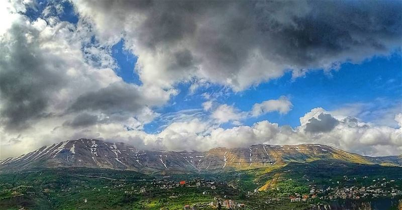 Beautiful things don't ask for attention 💚. mountains  lebanon  arz ... (Cedars of God)