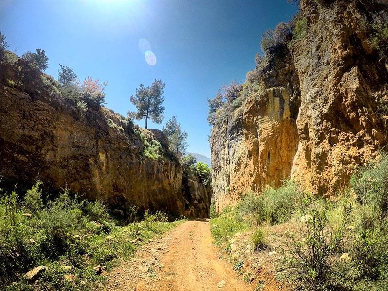 natureoftheplanet1 lebanoninapicture yourlifeoutdoors ... (Kafr Mattá, Mont-Liban, Lebanon)