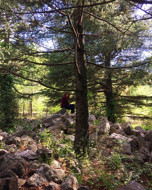 bikfayya bikfaya montlebanon montliban lebanon liban 🇱🇧 (Bikfayya, Mont-Liban, Lebanon)