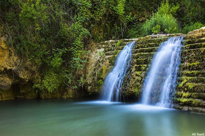 💙 nature spring river beautiful nikonnofilter nikon d810 ... (`Arab Salim, Al Janub, Lebanon)