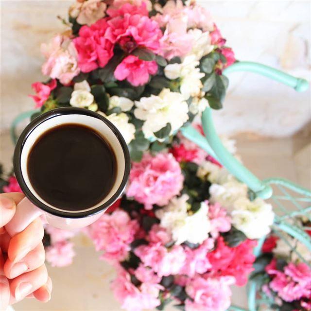 أعشق الصباحات عموماً...وصباح يبدأ بك أعشقه أكثر..... قهوتي قهوتي_عشقي رو