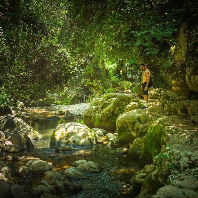 Moukhtara's river trail ... (El Moukhtâra, Mont-Liban, Lebanon)