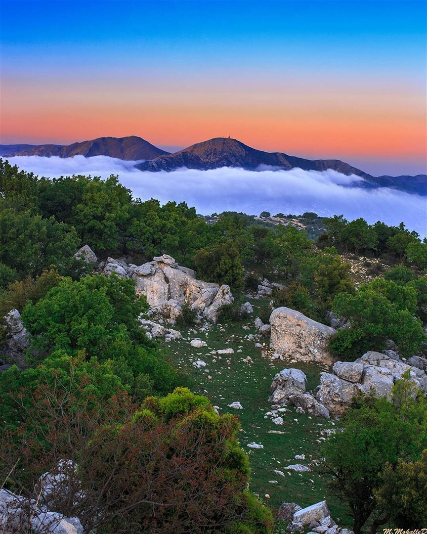 Niha mountain peak 1650m, below there is the amazing clouds view at sunset, (Jabal Sâfi)
