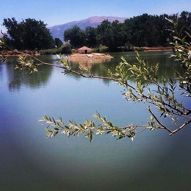 Every lake is a new word lake. photo photography lebanon young ...