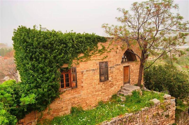 Stone....... travelawesome exploretheglobe worlderlust ... (Byblos, Lebanon)