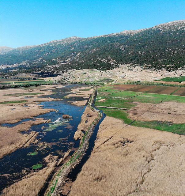 • wetland • luna_drone mavicair mavic drone aerialphotography ... (محمية عمّيق)