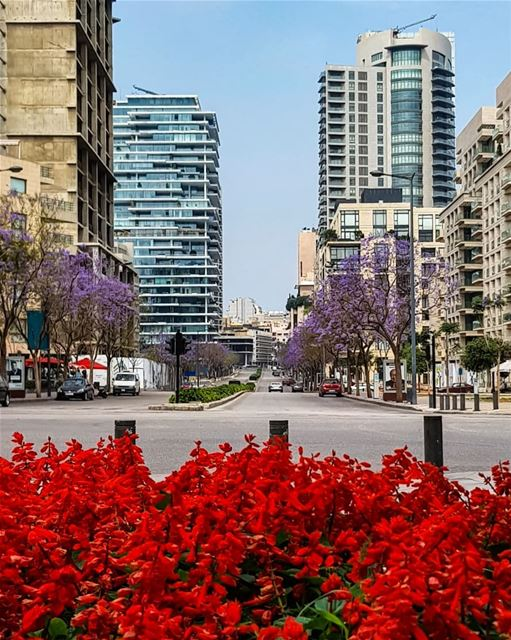 I wonder if I was blind.. Would I have seen these Colors by Heart?!!!🍃... (Downtown Beirut)