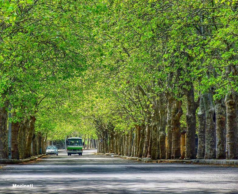 بشتاقلك لا بقدر شوفك و لا بقدر احكيكبندهلك خلف الطرقات و خلف الشبابيكبجرب (Sawfar, Mont-Liban, Lebanon)