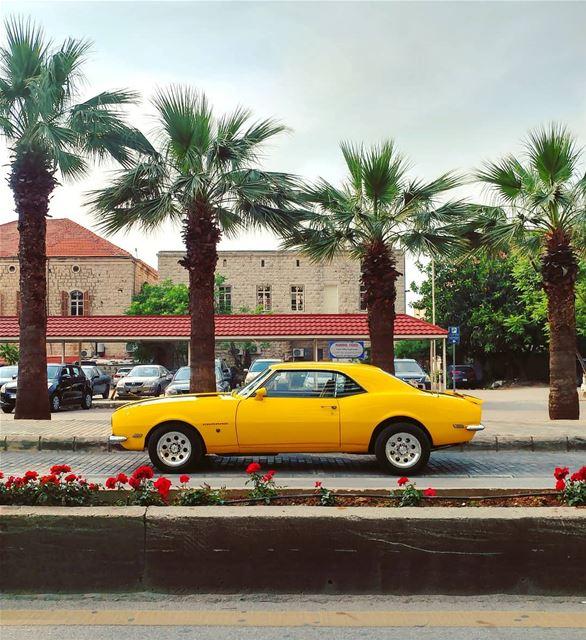 🔸A Sunday Car Photo 🔸 (Joünié)