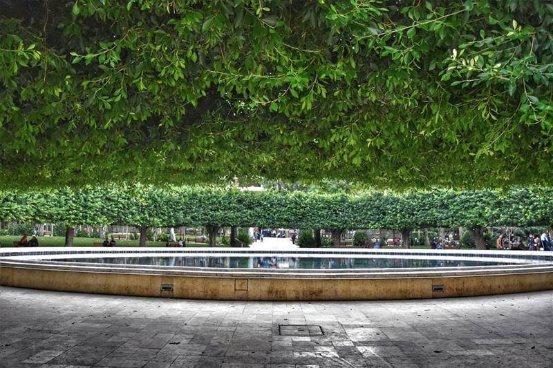 lebanon beirut photography prespective publicgarden shadow green ... (Sanayeh Park)