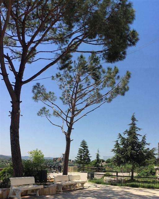 Calmversation letsgosomewhere serenity blessings spring lonelyplanet... (Kfifan, Liban-Nord, Lebanon)