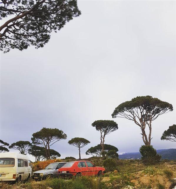 هالسيارة مش عم تمشي بدنا حدا يدفشها دفشةبيحكوا عن ورشة تصليح وما عرفنا وين (Bâroûk, Mont-Liban, Lebanon)
