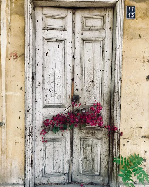- بيروت، زهرة من غير اوانها 🌺 beirut lebanon history ... (Beirut, Lebanon)