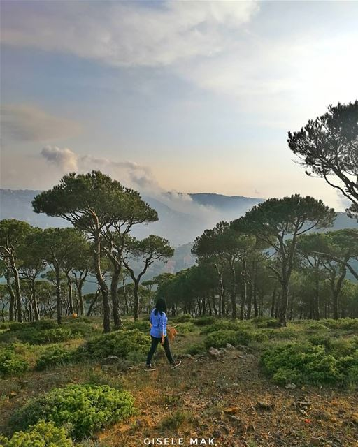 In every walk with nature, one receives far more than they seek. walk ... (Baskinta, Lebanon)