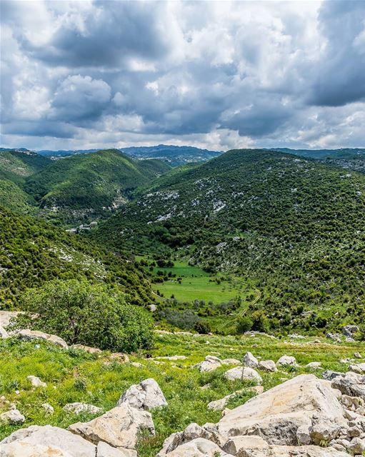 ____________________________________________________ treehugger961 ... (Habil, Mont-Liban, Lebanon)