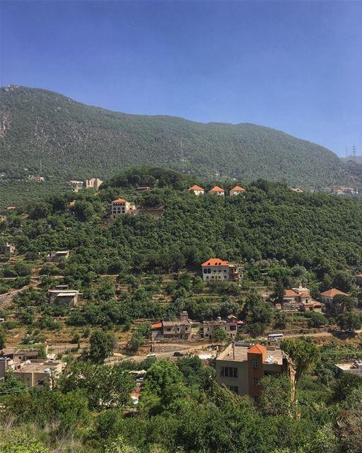 Sunday...rest day, snuggle day, happy day 🍀☀️ peterwenmaken ....... (`Aramoun, Mont-Liban, Lebanon)