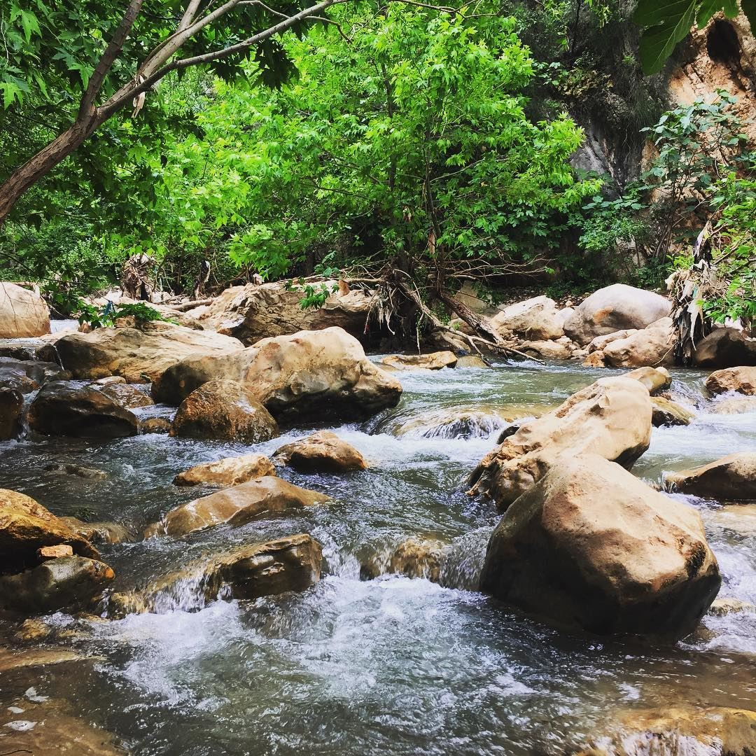 nature river waterfall green trees water rocks outing hiking ... (Deir Hamatoura - Kousba)