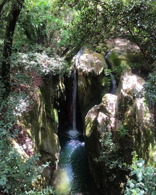 💦Get lost in nature🌿 a7labaladbil3alam 🇱🇧..... photo love ... (El-Mukhtarah, Mont-Liban, Lebanon)