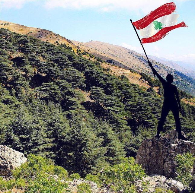 -V o t e L e b a n o n 🇱🇧-... cedars elections vote positivevibes... (Lebanon)