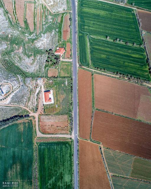 Natural Carpet ... bekaa westbekaa lebanon dji drones quadcopter ... (West Bekaa)