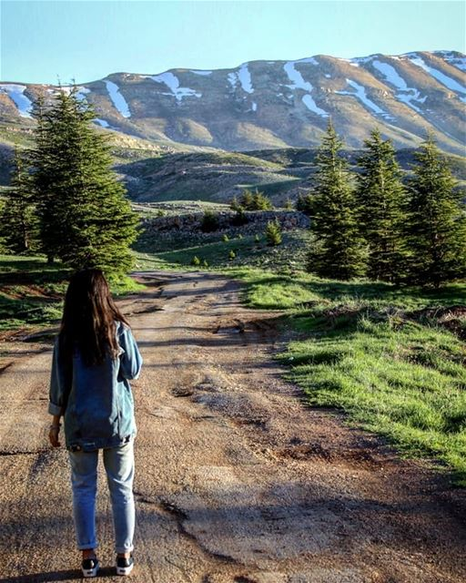 Promenade ❤ بشري_موطن_قلبي (Cedars of God)