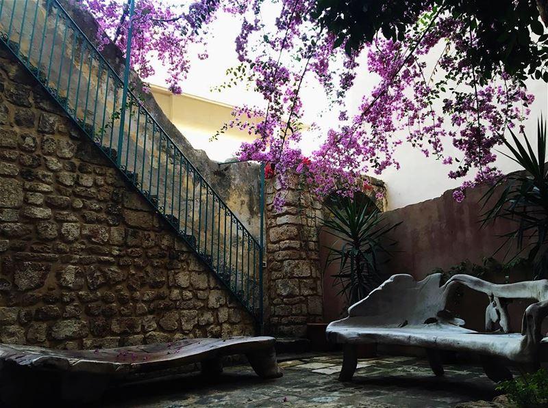 love color old like4like likeforlike amazing landscape nature ... (Tyre, Lebanon)