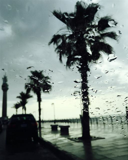 Summer Rain 💧 beautiful beirut wet clean ...