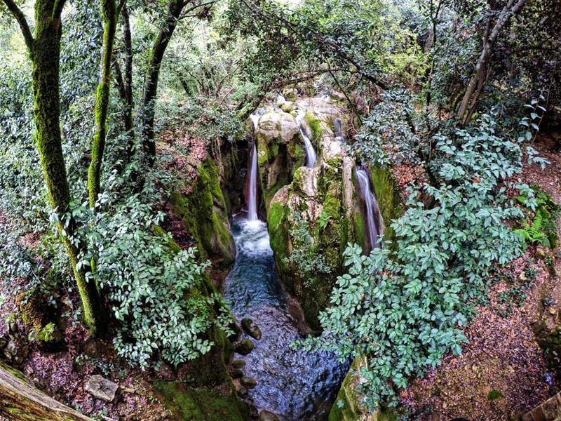 PieceOfHeaven Mokhtara waterfalls Lebanon livelovelebanon ... (El-Mukhtarah, Mont-Liban, Lebanon)