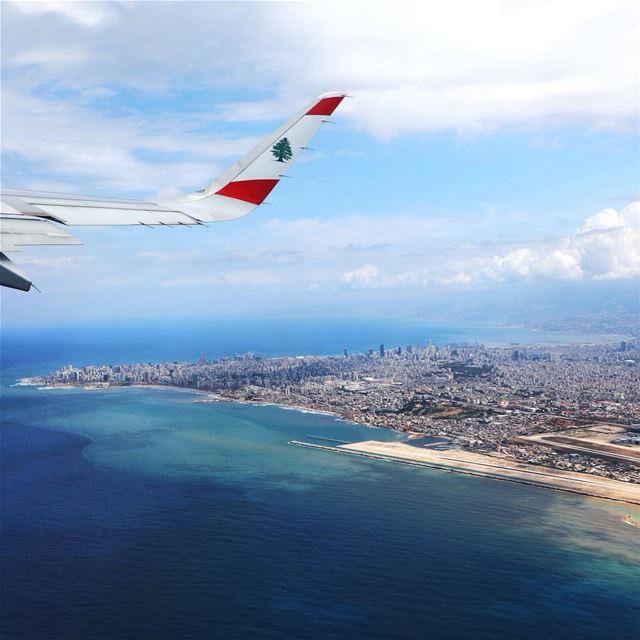 🇱🇧👈🏼comes first 👉🏻💙💚💛🧡❤️ come last Lebanon Beirut Cedar MEA ...