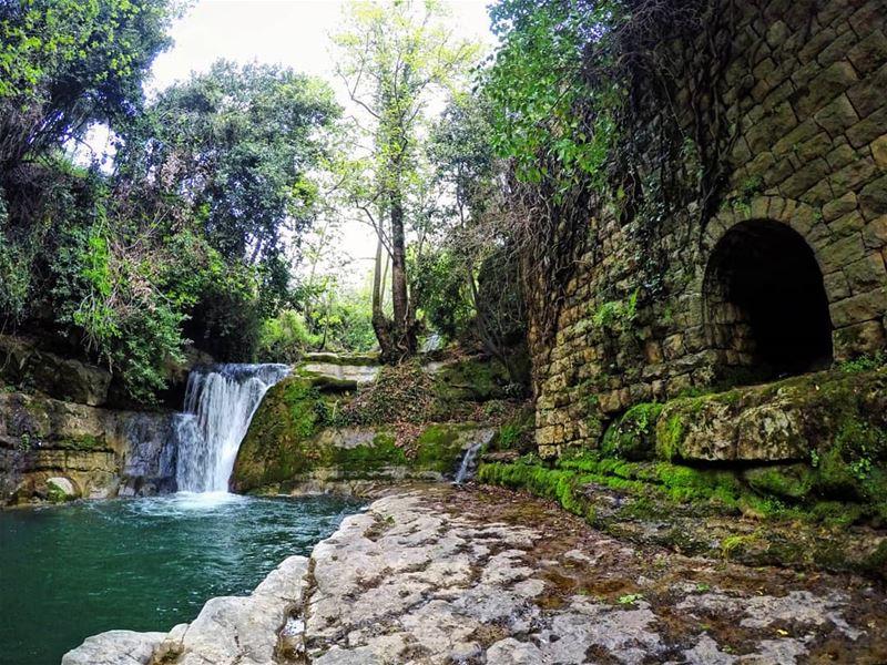 PieceOfHeaven Mokhtara waterfall Lebanon livelovelebanon ... (El-Mukhtarah, Mont-Liban, Lebanon)