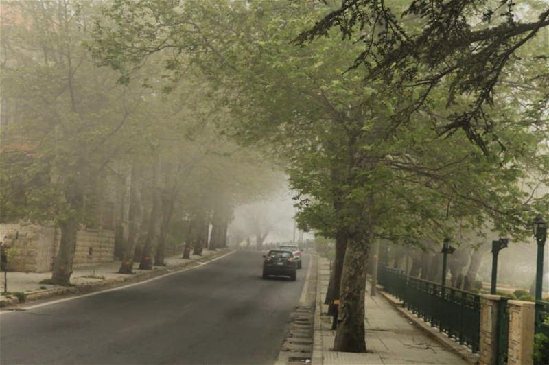 _____________________________________ sawfar lebanon naturelovers trees... (Sawfar, Mont-Liban, Lebanon)