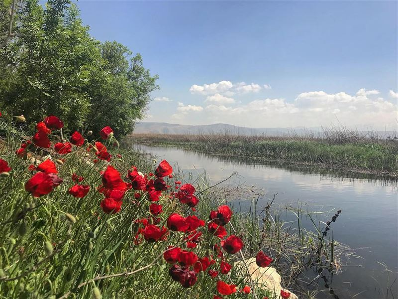 🌹‼️‼️................. lebanon nature landscape ... (West Bekaa)