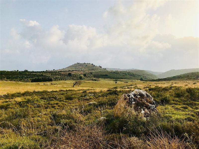 lebanon south jnoub ansar photography fotografia جنوب nature ... (Ansar, Lebanon)