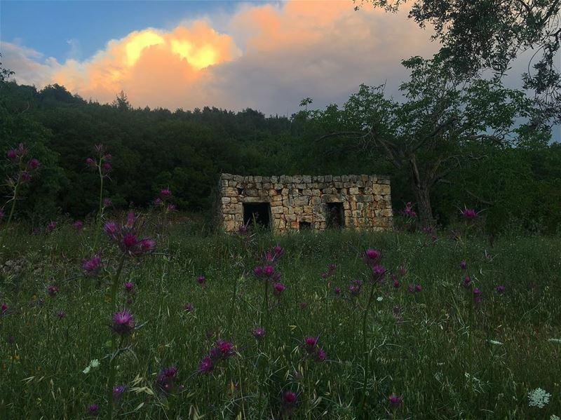 🌗...... lebanonspotlights thisismycommunity nationalart ... (Jebrâyel, Liban-Nord, Lebanon)