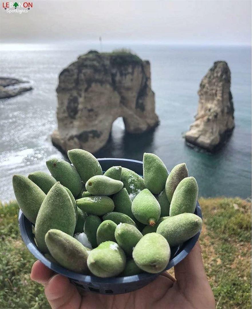 لوز_فرك Yes or No?By @lebanonspotlights Rawché Rawshe Beyrouth ... (Raouche Rock , Beirut , Lebanon)