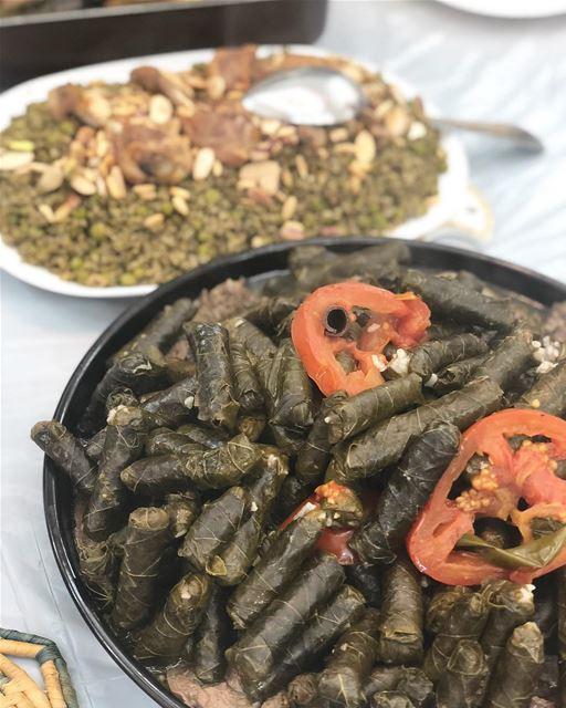 Folhas de uva recheadas conhecidas como 'Warak Enab' no Líbano. Servidos?...